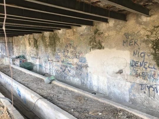 enlèvement de graffitis Marseille